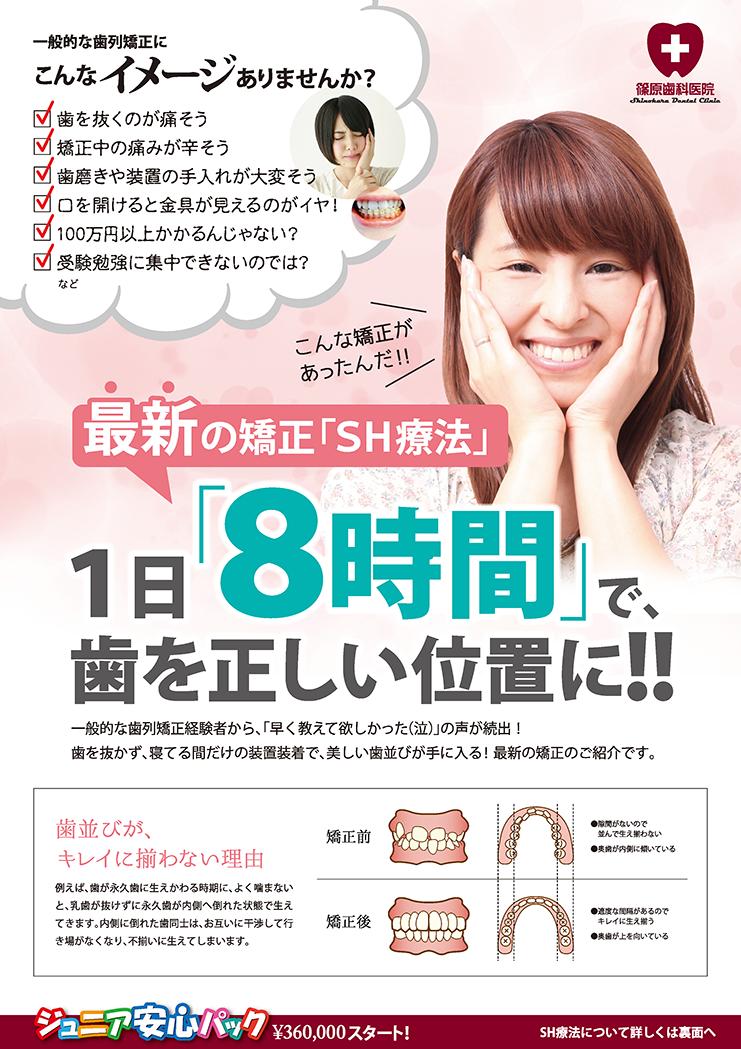 SH療法A4リーフレット_表面